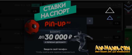 Pin Up Bet букмекерская контора нового поколения